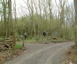 woodland-trust-020